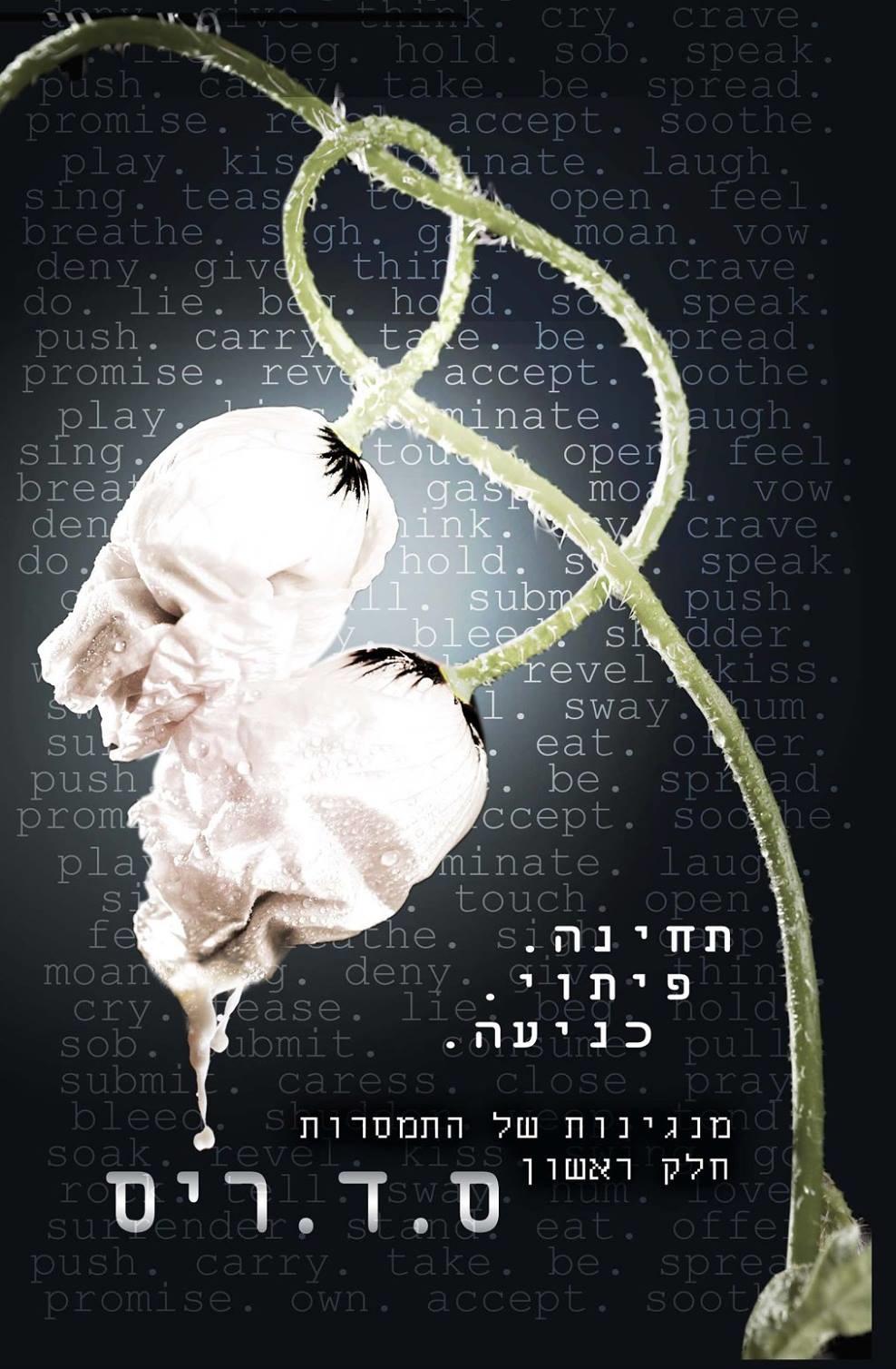 """""""הסוקרות של רומן רומנטי"""" האלבום של Ravit Lifshitz Zion"""